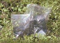 CL006_snapseal bags