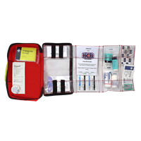 LifeSaver 2 First Aid Kit Pouch and Content